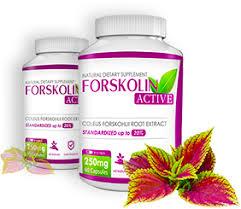 Forskolin Active bruciagrassi