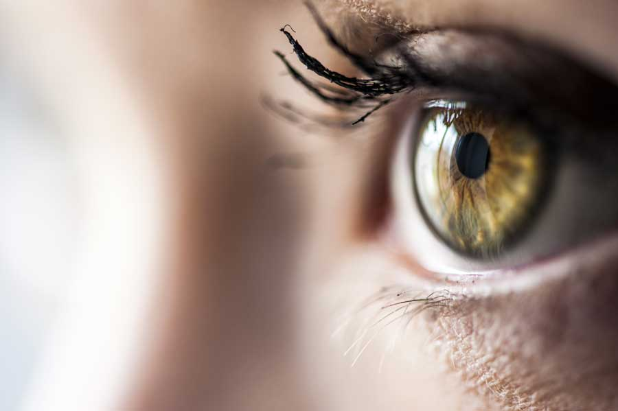 beavid integratore per la vista